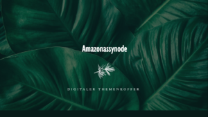 Read more about the article Themenkoffer zur Amazonassynode